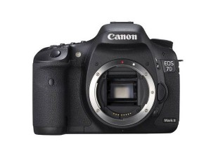Фотоаппарат Canon EOS 7D Mark II Body + Wi-Fi адаптер Canon W-E1